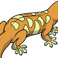 """Tiger Body"" female mutation of Gekko"