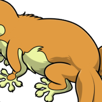 """Platypus Body"" male mutation of Gekko"