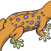 """Spotted Body"" female mutation of Gekko"
