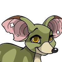 """Sewer Bat Ears"" female mutation of Rattus"